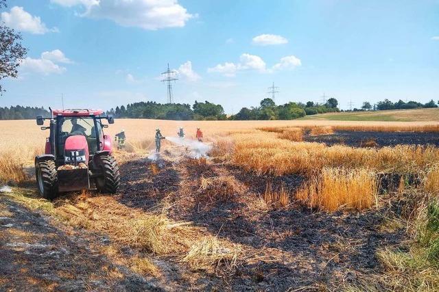 Gerstenfeld gerät in Brand
