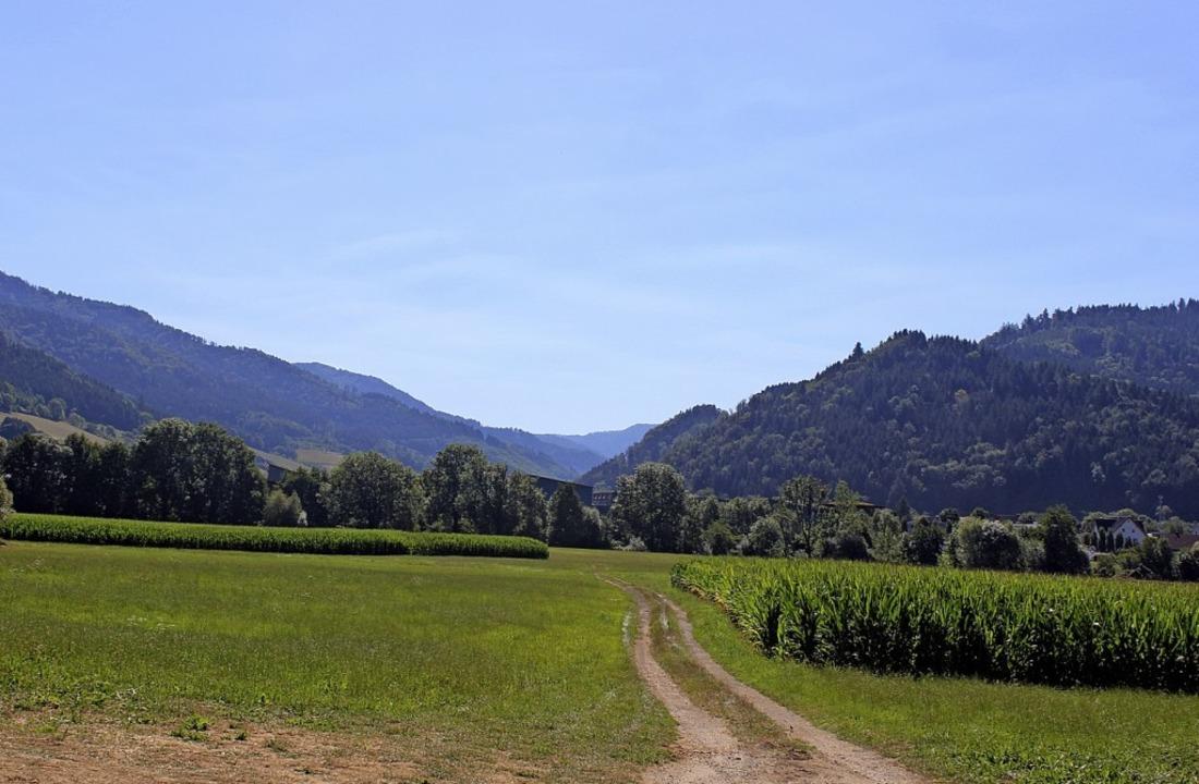 Landschaft, so weit das Auge reicht: B...lau Richtung Bleibach und Simonswald.   | Foto: Bernd Fackler