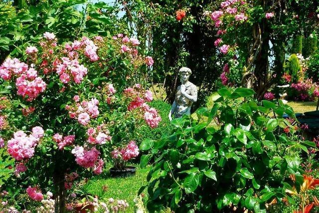 Gärten und Parks am Bodensee locken im Sommer zum Besuch