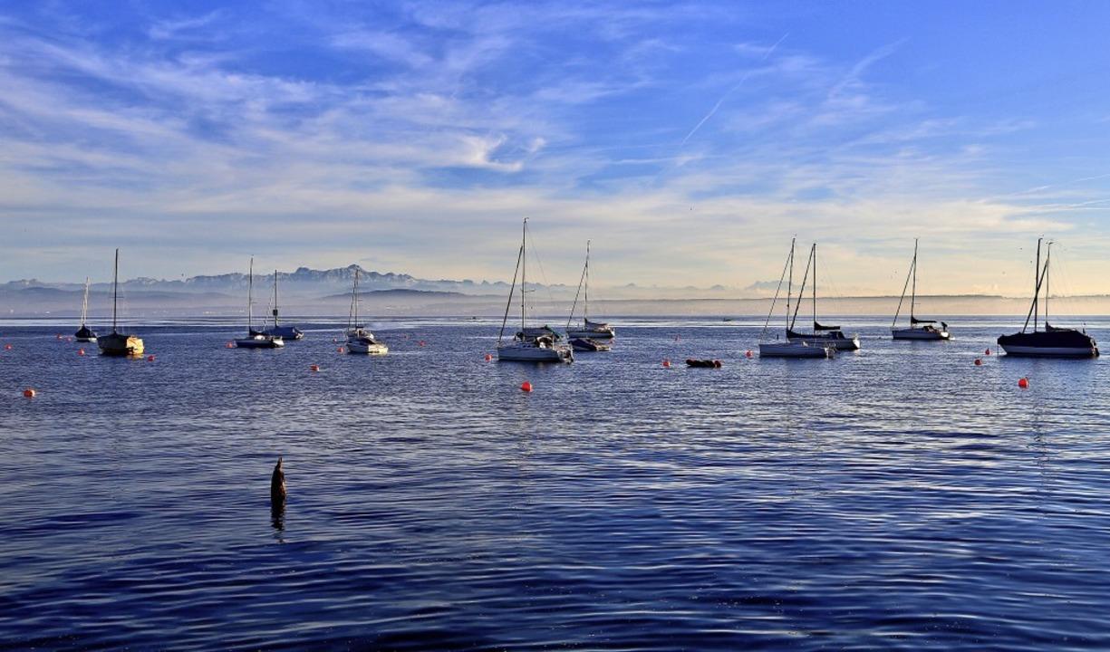 Boote dümpeln im Bodensee.  | Foto: Claudia Diemar