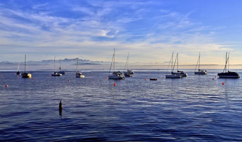 Boote dümpeln im Bodensee    Foto: Claudia Diemar