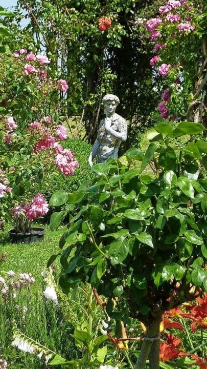 Blühende Pracht: Gartenoasen    Foto: Claudia Diemar