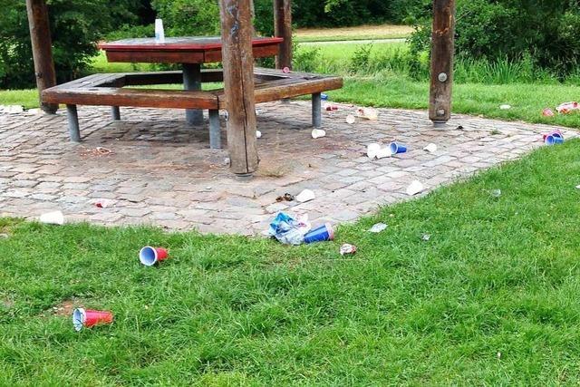 Wilde Müllentsorgung in Lörrachern Parks ist ein bekanntes Problem