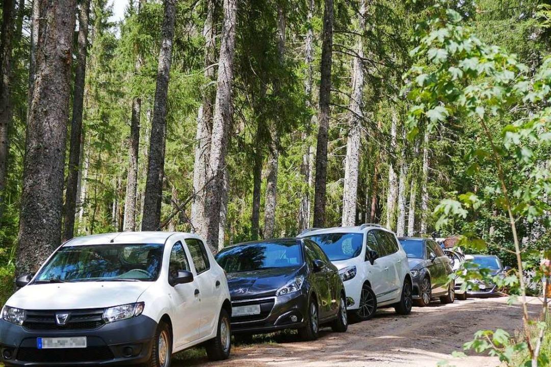 Rund um den Windgfällweiher parkten Autos auch auf den Waldwegen.    Foto: Eva Korinth
