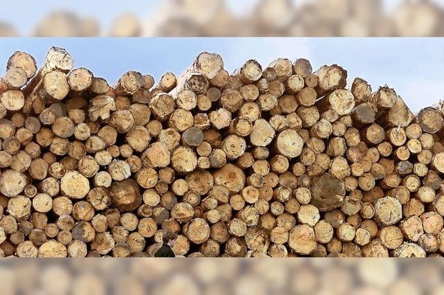 Holzaufarbeitung nicht kostendeckend
