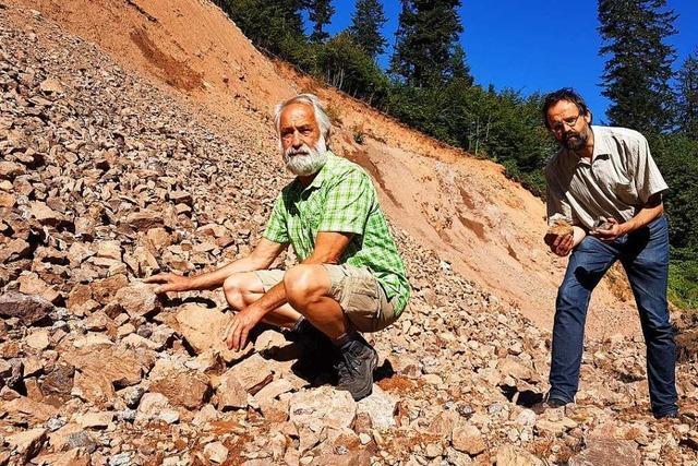 Im Oberen Wiesental gibt es seit Jahren einen illegalen Steinbruch