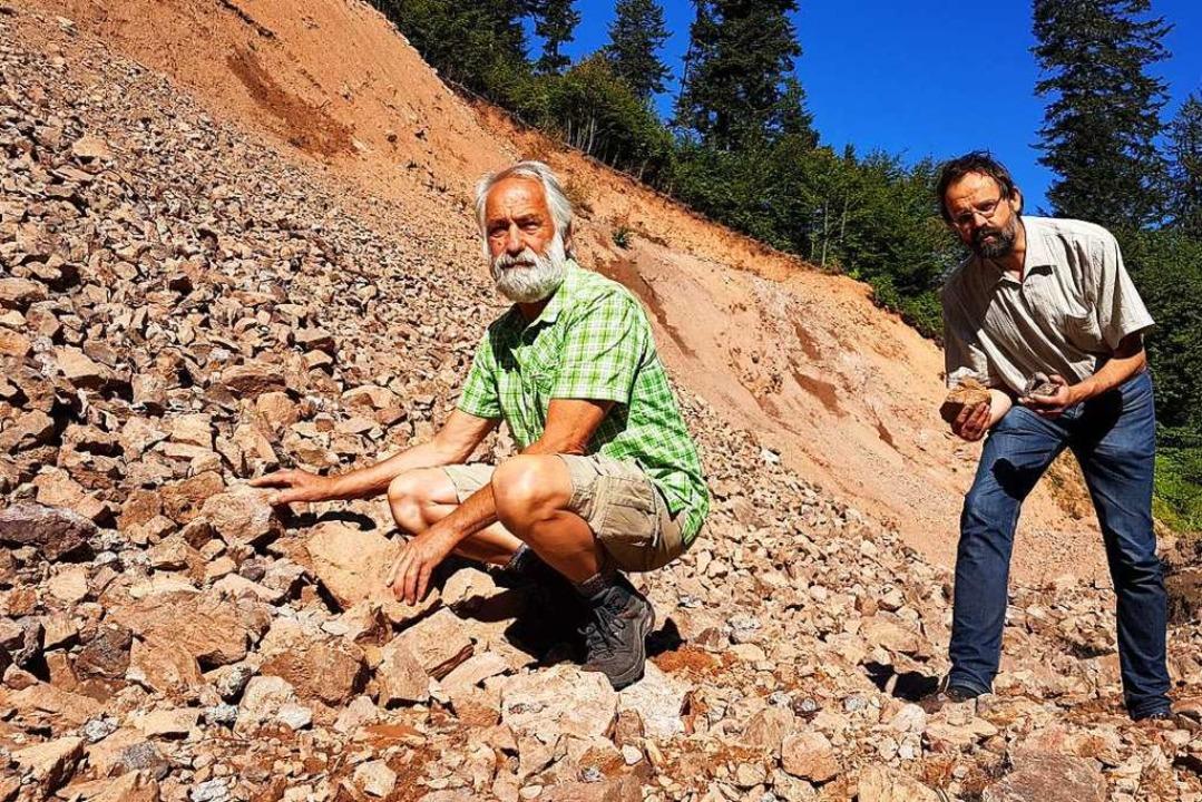 Markus Wursthorn vom Bund für Umwelt- ...inbruch Steine abtransportiert wurden.  | Foto: Gerald Nill