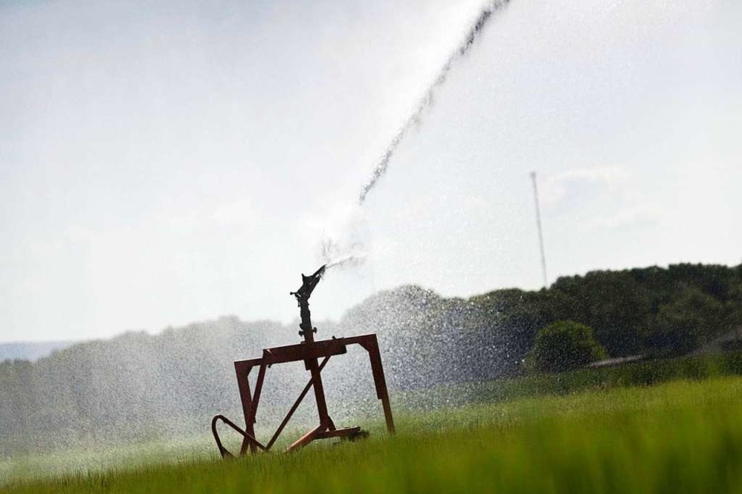 Der Wasserverband Südliches Markgräfle...egeln beim Wasserverbrauch  zu achten.  | Foto: Frank Rumpenhorst
