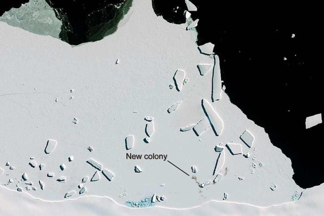 Als kleiner, grauer Schleier ist eine ... einem Satellitenaufnahme zu erkennen.  | Foto: Copernicus Sentinel-2 (dpa)