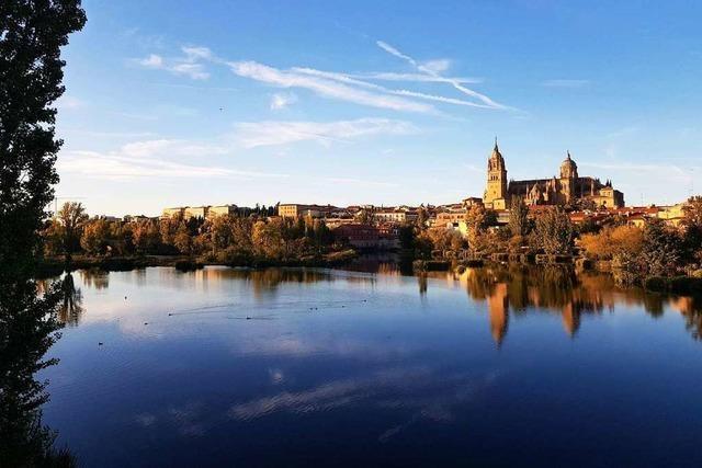 9 Orte und Dinge in Freiburg, mit denen Du dich wie im spanischen Salamanca fühlst