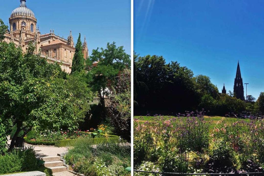 Links: Der Huerto de Calixto y Melibea...tadtgarten auf das Freiburger Münster.  | Foto: Claudia Förster Ribet/Teresa Spiller