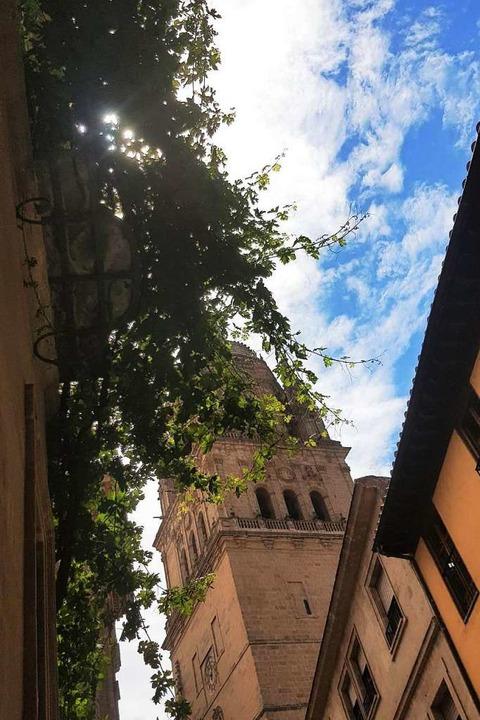 Weinbewachsener Balkon am historischen...Blick auf die Kathedrale in Salamanca.  | Foto: Claudia Förster Ribet/Teresa Spiller