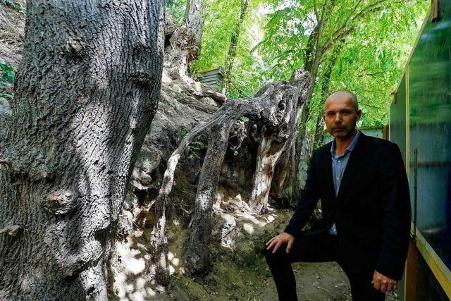 In Auvers-sur-Oise hat Vincent van Gogh sein letztes Bild gemalt