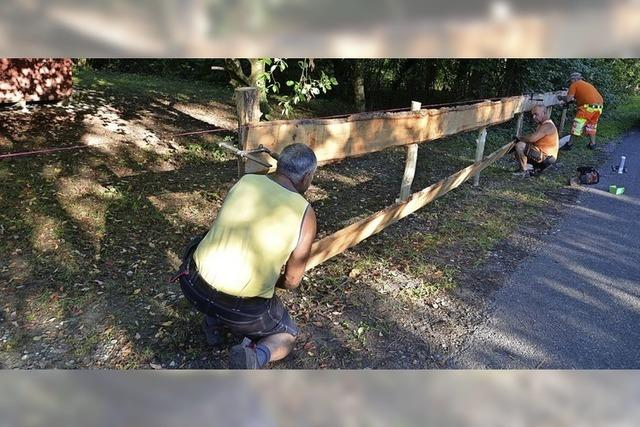 Zaun gegen wildes Parken