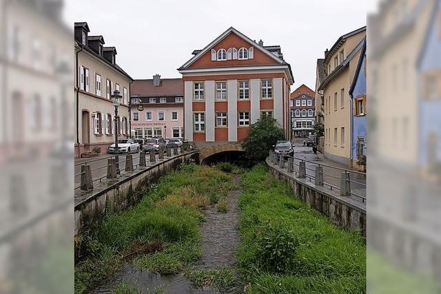 Ufermauer soll erhöht werden