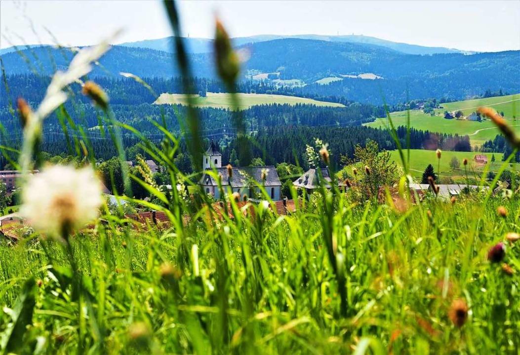 Grüße aus Breitnau – das Dorf liegt oberhalb des Höllentals.  | Foto: Susanne Gilg