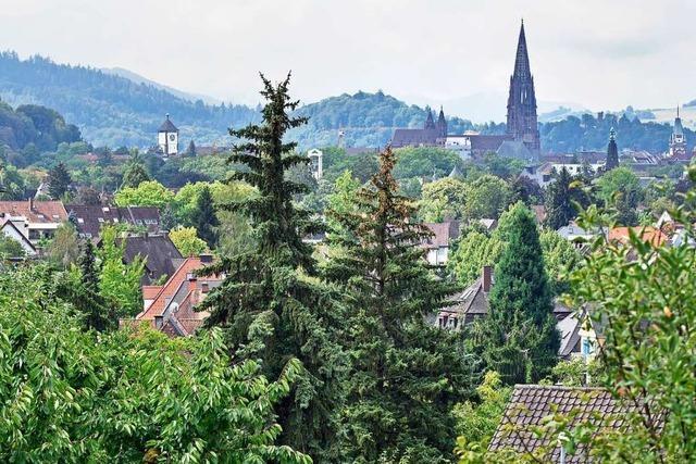 Bauprojekt in Freiburg-Herdern ist Nachbarn viel zu groß