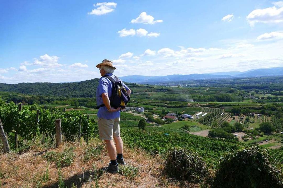 Auch der Wandertourismus liegt im Kaiserstuhl im Trend.    Foto: Gerold Zink