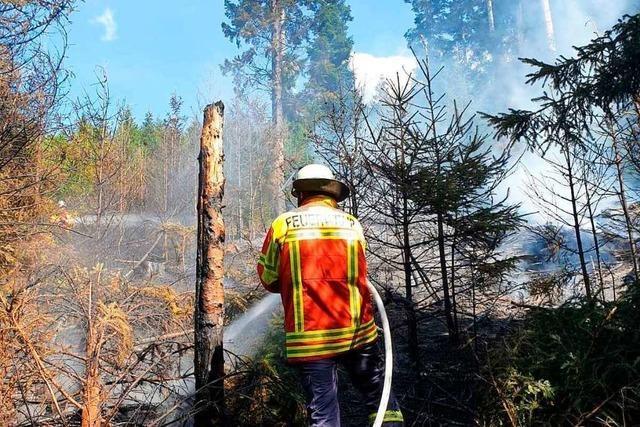 Kreis Breisgau-Hochschwarzwald warnt vor Waldbränden