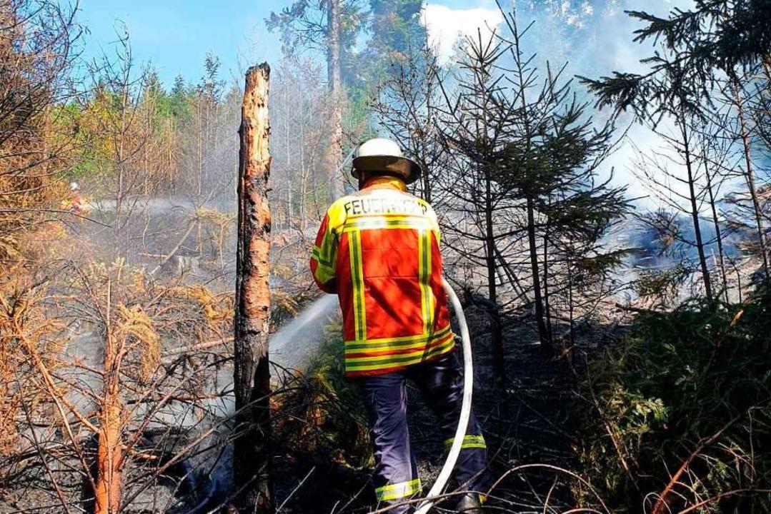 Einsatz in Stegen Mitte Juli: Die Feuerwehr löscht einen Vegetationsbrand.  | Foto: Feuerwehr Stegen