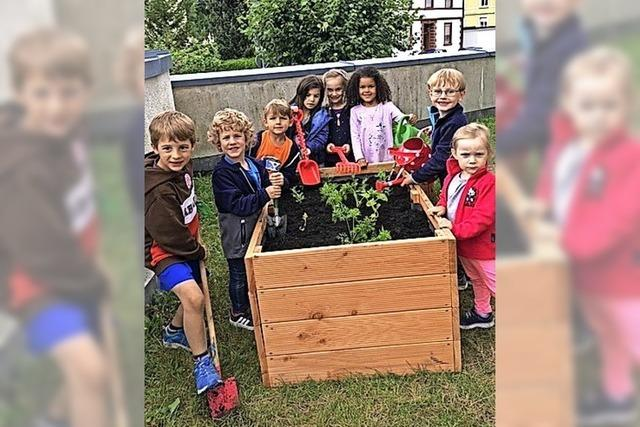 Junge Gärtner in Zell
