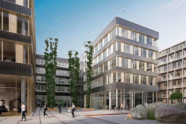 Auf Freiburgs Business-Meile geht es in Riesenschritten voran