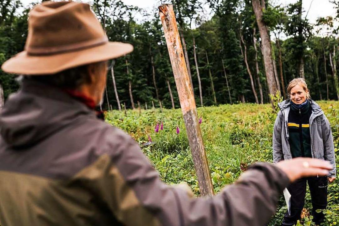 Fachgespräch im Wald: Christine Weinig und Rudi Suchant (links)  | Foto: von Ditfurth,Philipp
