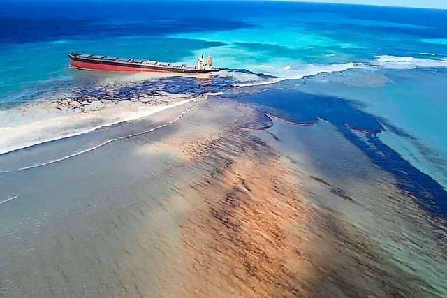 Helfer versuchen Ölkatastrophe auf Mauritius abzumildern