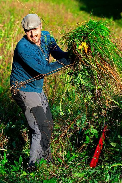 Der Landschaftsökologe Florian Hertenstein  packt gerne mit an.  | Foto: Wolfgang Scheu