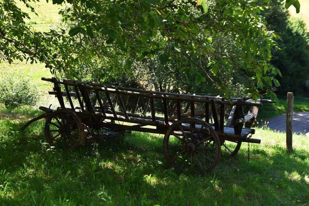 Typisch Bauerhof, ein solcher Wagen gehört einfach dazu    Foto: Maja Tolsdorf