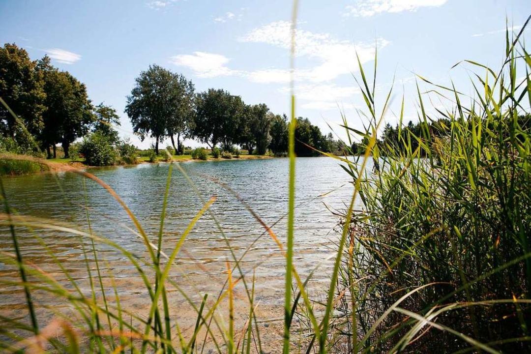 Im Baggersee bei Kappel-Grafenhausen kam ein 48-Jähriger ums Leben.  | Foto: Christoph Breithaupt
