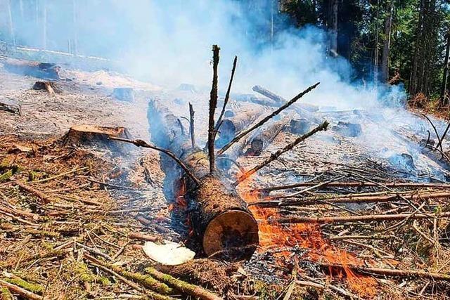 Feuerwehr Murg bekämpft einen Flächenbrand