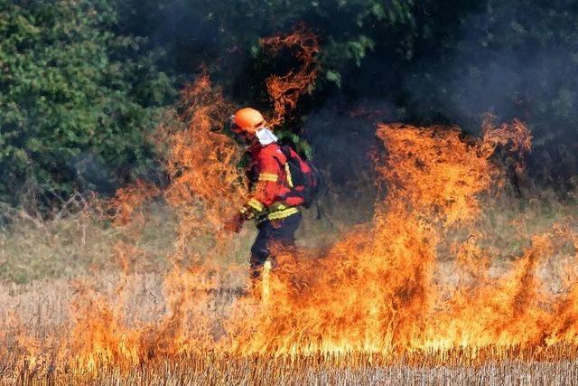 Wie Feuerwehren in Freiburg gegen Waldbrände gerüstet werden