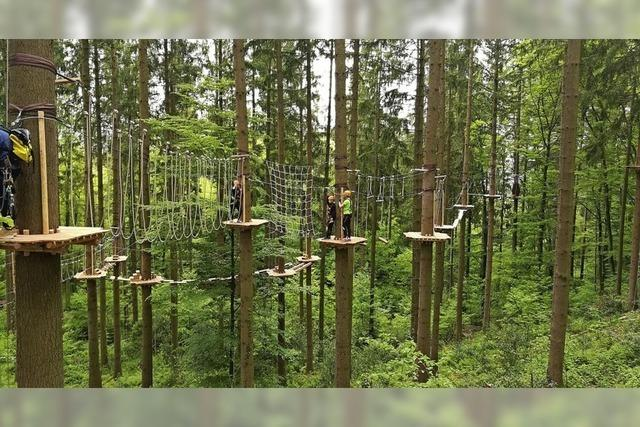 Im Kletterwald Hochempor gibt es Kletterpfade für Anfänger und Fortgeschrittene