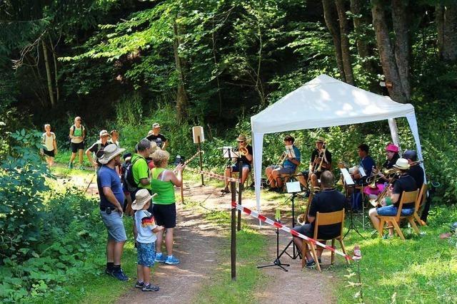 Musikalische Register-Rallye im Wiedener Wald