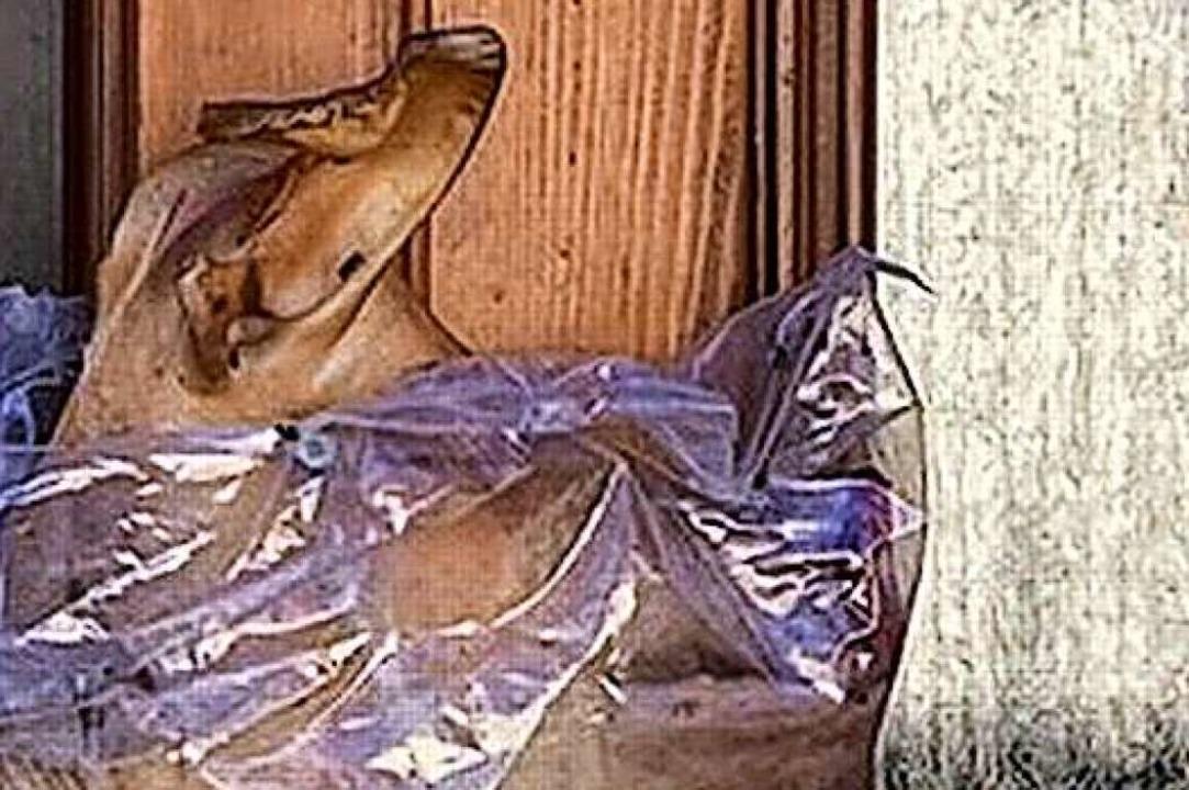 Diesen halben Schweinekopf schraubten ...an die Tür eines Kenzinger Wohnhauses.  | Foto: Privat