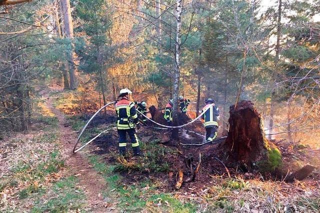 Das Landratsamt warnt vor großer Gefahr von Waldbränden