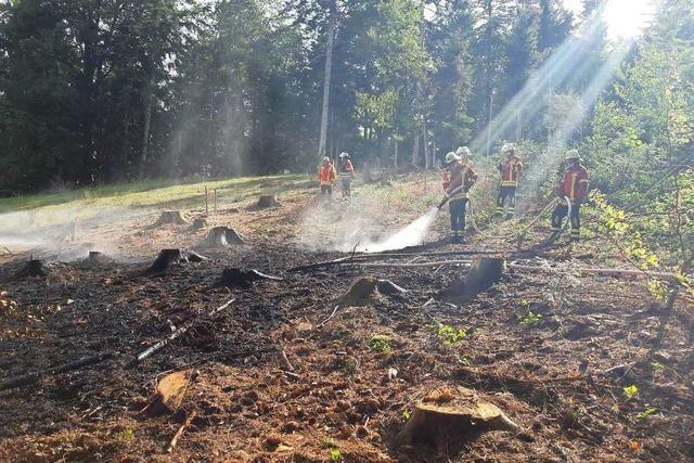 Waldbrand in Wagensteig durch Blitzeinschlag