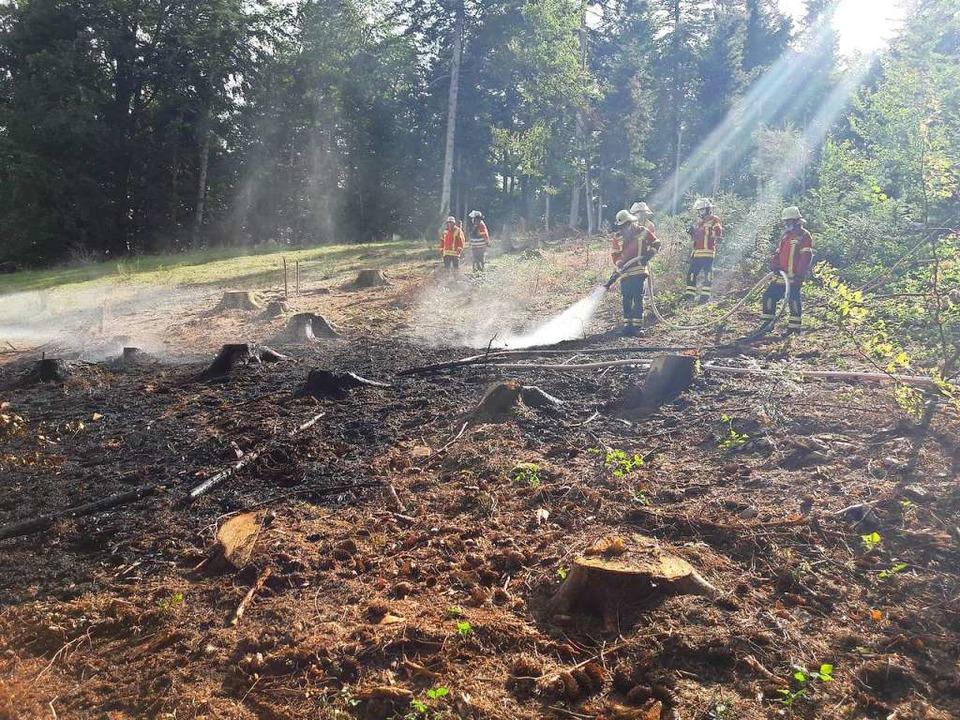 Ein Blitz hatte in Wagensteig im Wald einen Brand ausgelöst.  | Foto: Feuerwehr