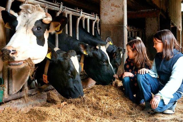Bauernhof-Urlaub wird in der Ortenau immer beliebter