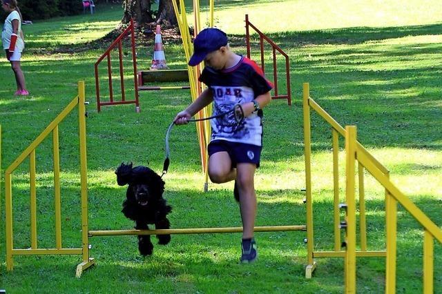 Spiel und Spaß für Kinder wie Hunde