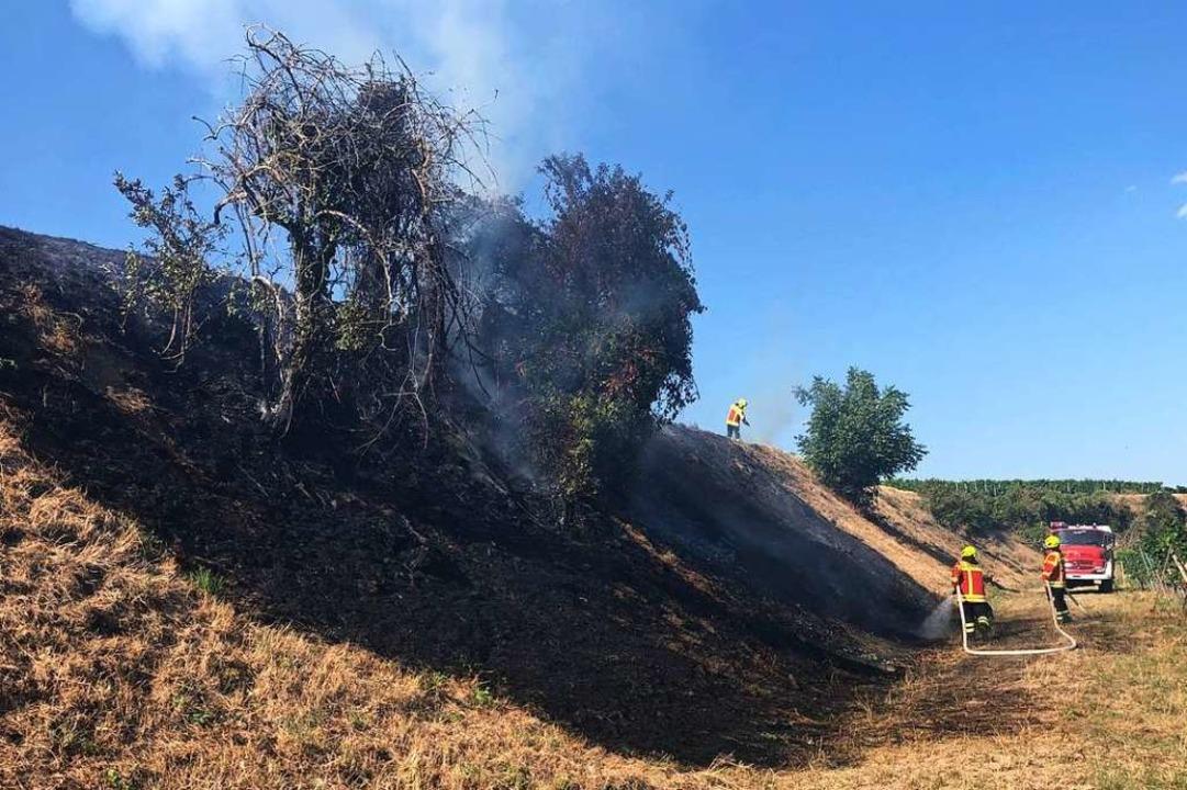 Erneuter Einsatz wegen eines Flächenbrandes für die Herbolzheimer Wehr     Foto: Feuerwehr Herbolzheim
