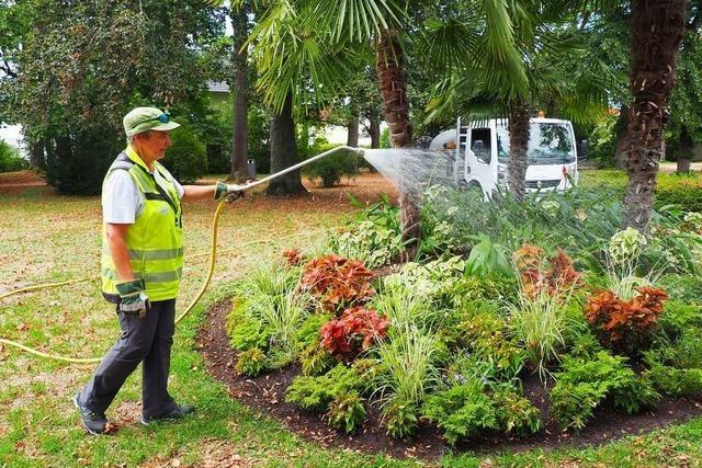 Trockenheit und Hitze lassen für die Stadtgärtner keine Pause beim Bewässern zu