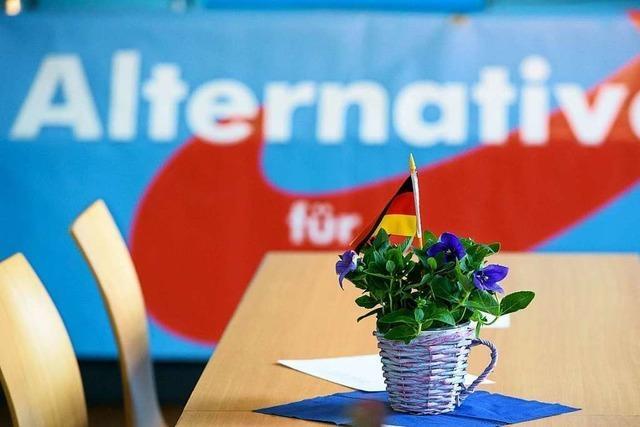 AfD trägt Scharmützel vor Freiburger Landgericht aus