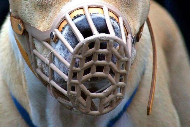 Schäferhund soll in Lörrach eine Joggerin angegriffen haben
