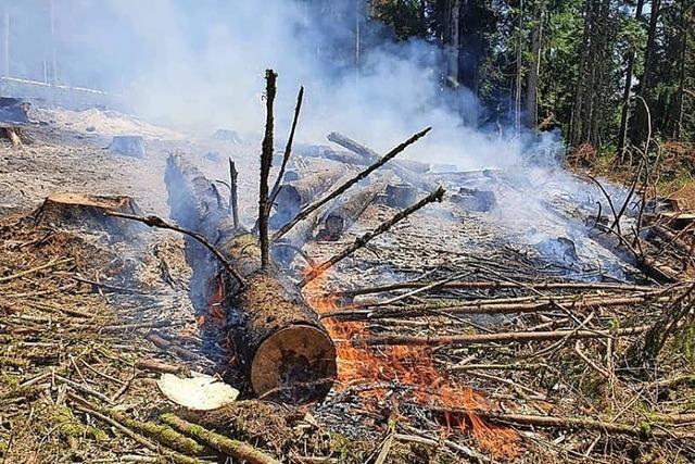 Feuer im Wald ist verboten