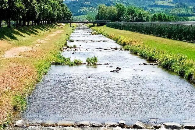 Wanderung: Im Obst- und Weinparadies Oberkirch und Renchtal