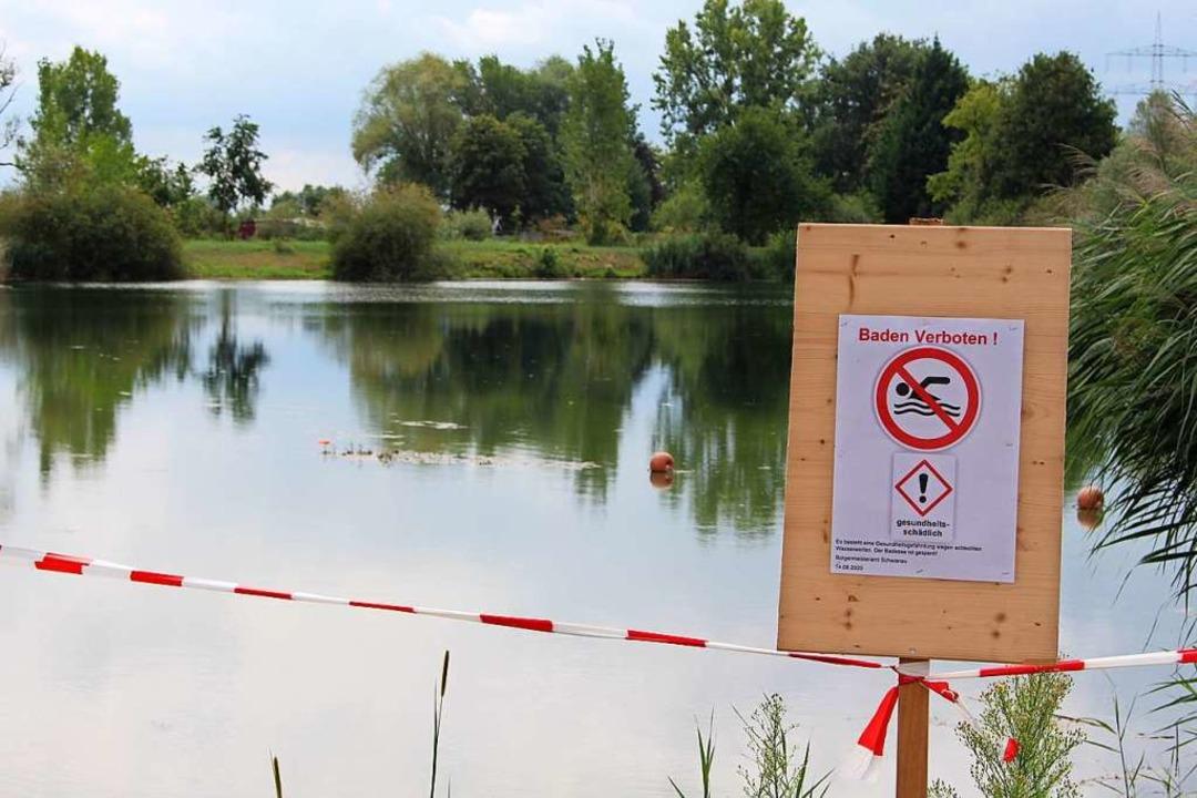 Baden ist ab sofort verboten im Baggersee beim Vereinsheim.  | Foto: Reiner Beschorner