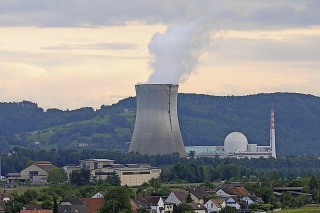 Atomkraftwerk ist wieder am Netz