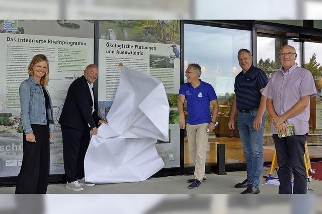 Geballte Infos zum Rheinhochwasser